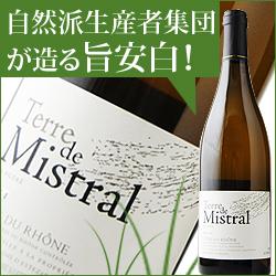 コート・デュ・ローヌ・テル・ド・ミストラル・ブラン カーヴ・デステザルグ 2017年 フランス ローヌ 白ワイン 辛口 750ml