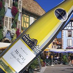 ミュスカ・コレクション カーヴ・ド・リボヴィレ 2015年 フランス アルザス 白ワイン 辛口 750ml
