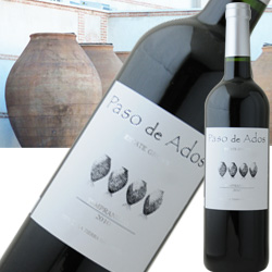 パソ・デ・アドス・テンプラニーリョ ボデガス・アルスピデ 2017年 スペイン カスティーリャ・ラ・マンチャ 赤ワイン ミディアムボディ 750ml