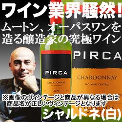 ピルカ・シャルドネ ヴィニャ・マーティ 2016年 チリ セントラル・ヴァレー 白ワイン 辛口 750ml